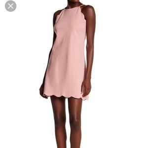 NWT Love aday scalloped shift dress